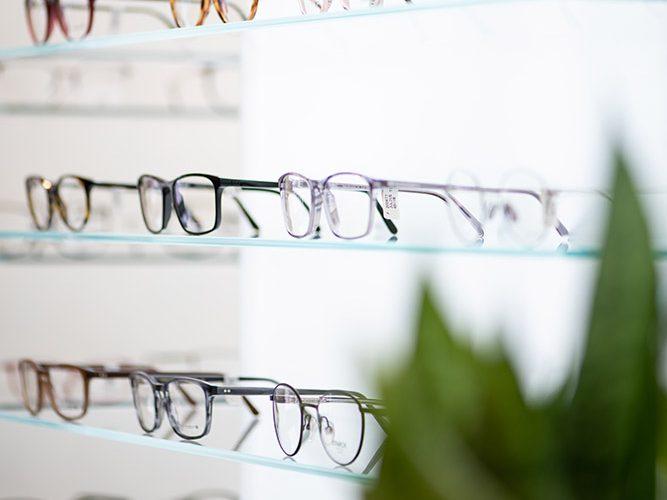 Verschiedene Brillenfassungen im Regal